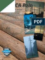 CCA Pole Brochure (2)