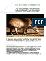 Algunas Especies Peruanas en Peligro de Extinción