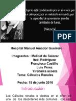 Presentación1.Pptx Calculo Renales