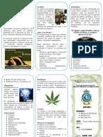 ADICCIONES - triptico.docx
