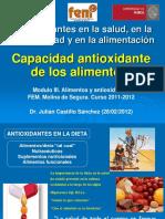 2012-02-28-CapacidadAntioxidanteAlimentos.pdf