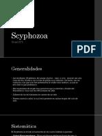 Scyphozoa.pptx