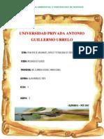 PRINCIPIO DE ARQUIMIDES - MECANICA.docx