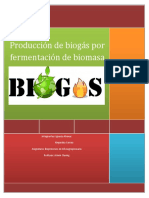 Producción de Biogás por Fermentación de Biomasa