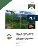 Resumen Ejecutivo EIA transporte de gas de camisea.pdf