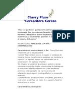 6 Cherry Plum.docx