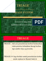 2.-Triage-System.ppt