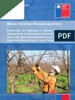 3.Protocolo_Tmert-EESS.pdf