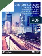 2017 Blue Steps Executive Career Outlook