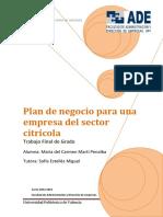 MARTÍ - PLAN DE NEGOCIO PARA UNA EMPRESA DEL SECTOR CITRÍCOLA.pdf