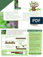Winter-salads.pdf