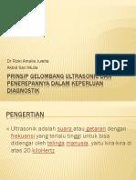 Prinsip Gelombang Ultrasonic Dan Penerepannya Dalam Keperluan Diagnostik