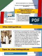Citas y Referencias Bibliográficas Basadas en Normas Apa Fin