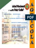 INF COLOR DE SUELO.docx