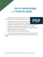Anatomie Et Morphologie de l'Intestin Grele