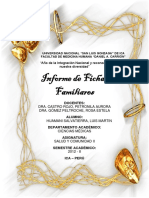 Informe de Fichas Familiares