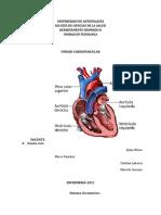 Cardiovascular GUIA 2012