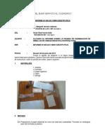 INFORME DE HORTI.docx