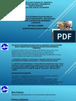 PRESENTACION PROYECTO.pptx