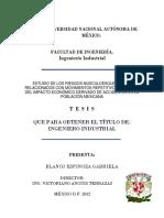 Ejemplo Tesis.pdf