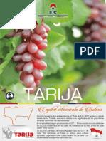 Folleto Tarija.pdf