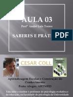 edcampo_apresent_saberes_e_praticas_andre_luis_torres.pdf