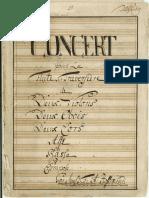 Hoffmeister Concerto