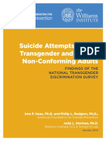 AFSP Williams Suicide Report Final