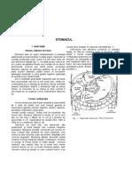 N. A - Stomac (anatomie si fiziologie).docx