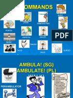 commands (1).ppt