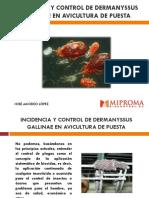 Jose Amodeo Lopez Impacto y Control Del Acaro Rojo en Avicultura de Puesta