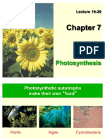 #19-20 Ch 7 Photosynthesis Su'17.pdf