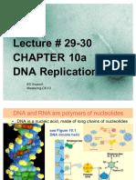 #29-30, DNA Rep,  Ch 10a 1210 Su'17