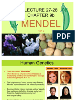 #27-28, Ch 9b Human Genetics and Variations on Mendel 1210 Su'17.pdf