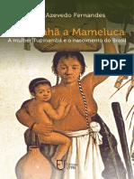 De Cunhã a Mameluca a Mulher Tupinambá e o Nascimento Do Brasil