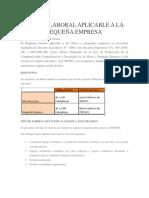 Regimen Laboral Aplicable a La Micro y Pequeña Empresa