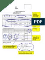 Impuesto Al Patrimonio Vehicular FORMATO LLENADO