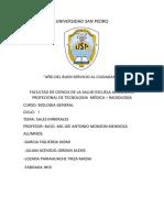 MIMERALES INFORME.docx