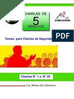 Manual de Temas de Seguridad Desde Nc2b0 1 Al Nc2b0 25 Cmsg