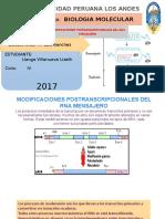 Modificaciones ARN