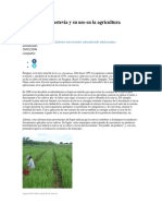 El cultivo de la estevia y su uso en la agricultura.docx