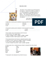 5_fisa_de_lucru_5.doc