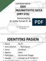 mas amin dr sofia_2