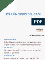 Principos Gam (1)