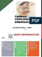 Cambios Fisiologicos Embarazo - Ascorra Ibarra , Jorge