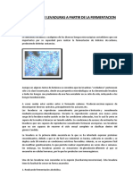 OBTENCION DE LEVADURAS A PARTIR DE LA FERMENTACION