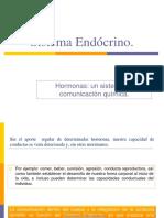 1 Sistema Endòcrino POR  Judith Segovia