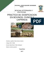Dosificacion en Bovinos, Ovinos y Caprinos 09