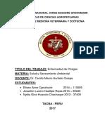 Monografía de Salud y Saneamiento Ambiental