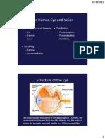Chapter 5 Eye
